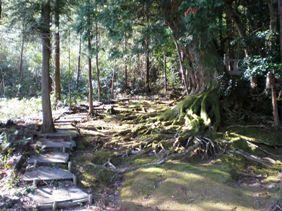 赤猪岩神社石段